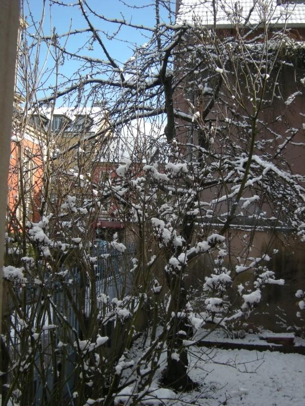fenêtre neige.jpg