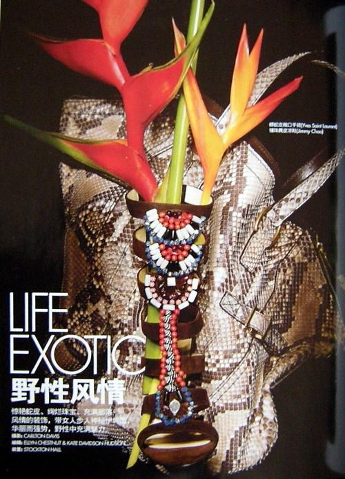 exotic.jpg
