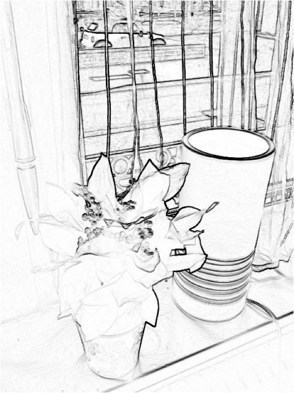 Muguet Bebloom 1.jpg