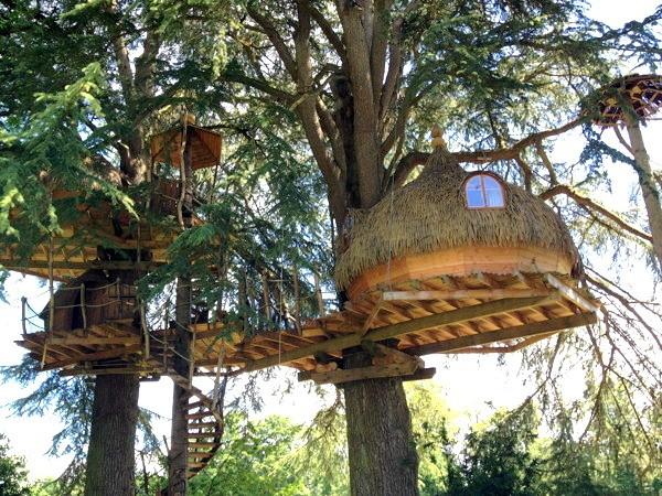 Cabane dans l'arbre.jpg