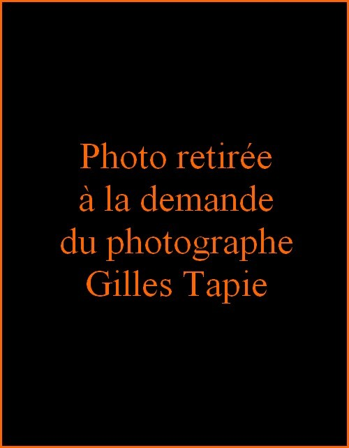 Gilles Tapie.jpg