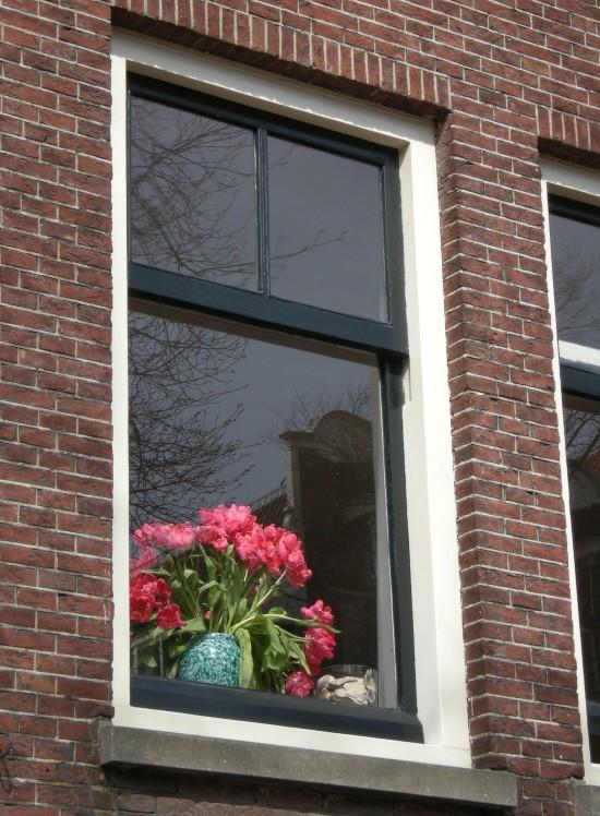 Coin de fenêtre.jpg