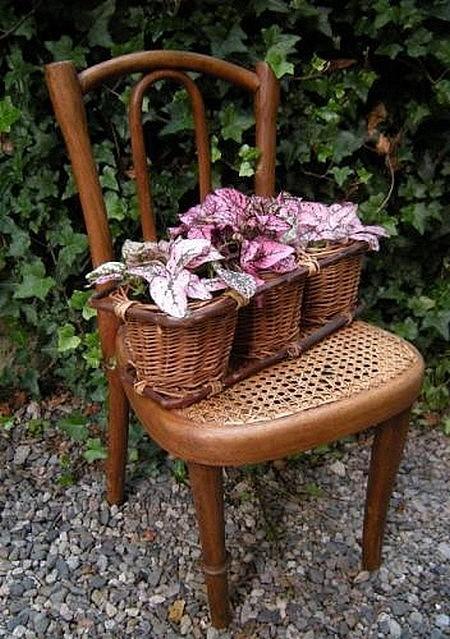 chaise juin.jpg