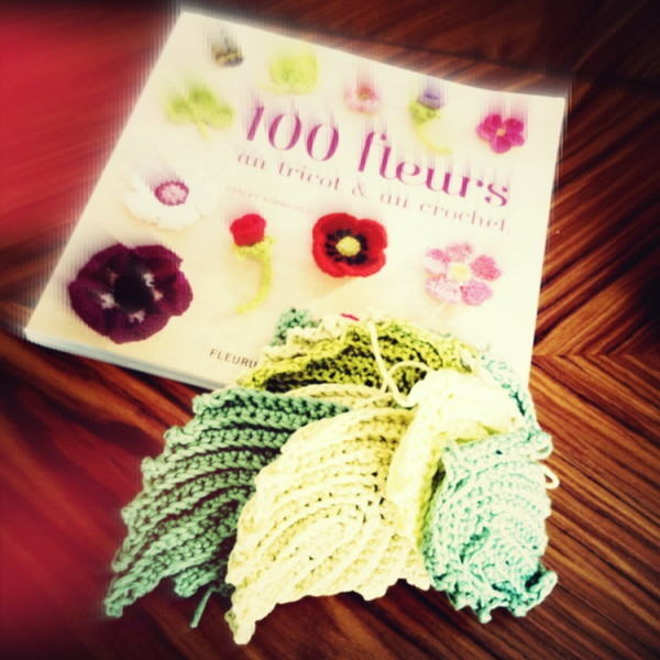 100 fleurs.2jpg.jpg